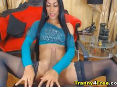 Horny Tranny Stroking her Massive Hard Dick