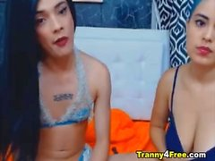 Sexy Tranny Fucks Her Female Friend