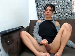 The best Tgirl with big cocks