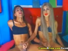 Two Horny Trannies Sucking And Having Anal Fuck
