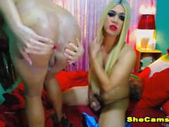Two Horny Shemale Couple On Cam