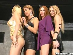Tranny Disco Party Orgy feat Alexia Firenze, Bia Bastos, Evelin Rangel n La