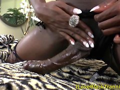 Bigcock solo black petite tgirl jerking off