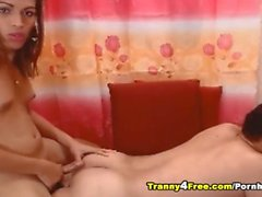 Sweet Couple Tranny Having Anal Fuck On Webcam